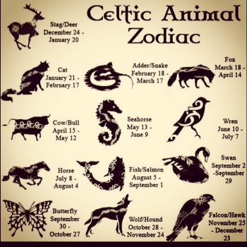 Celtic Zodiac Animals What Are They In Druid Symbol History